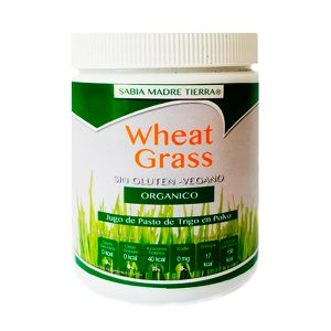 Wheat Grass un super alimento totalmente natural