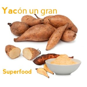 Yacón Alternativa Para El Sobrepeso Y Diabetes. ¡Créelo!